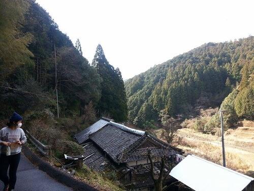 平山の風景 山道