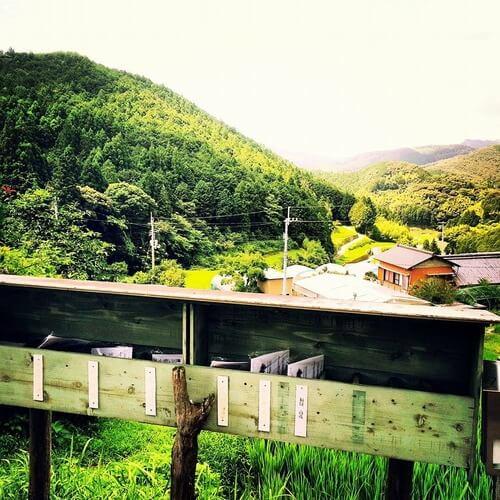 平山の風景 新聞受け 夏の写真