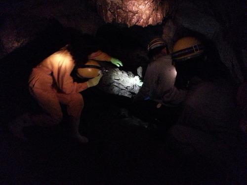 龍河洞見学