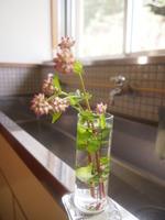 飾り直したお花