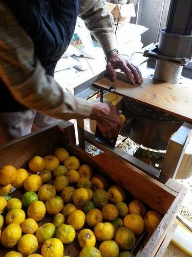 柚子搾り機