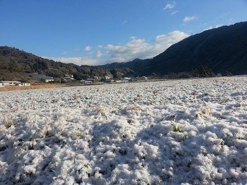 実家の香北町は雪国の様相