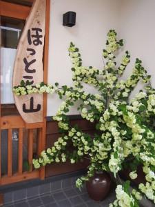 <ほっと平山> 受付おばちゃん日記 2015年04月28日 新緑の平山